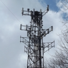 Cell Tower With Nest